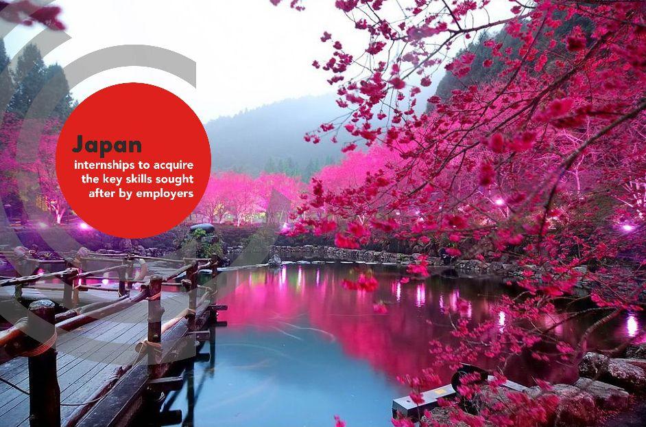 Intern in Japan - Pink Japanese Leaves over Pond