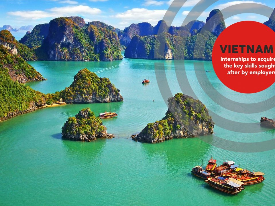 Reasons To Intern In Vietnam - Ha long Bay