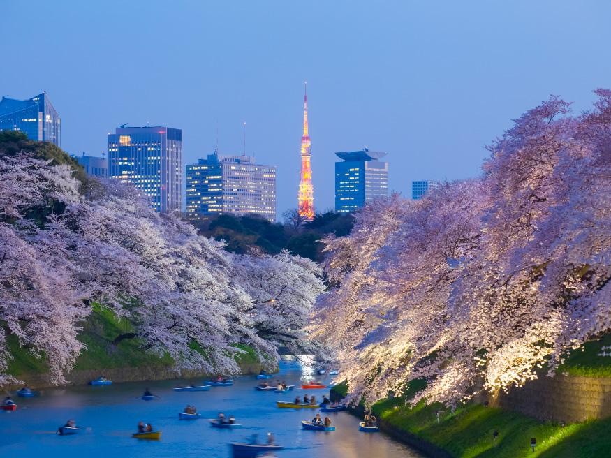 International Internships - Tokyo Japan River - CRCC Asia