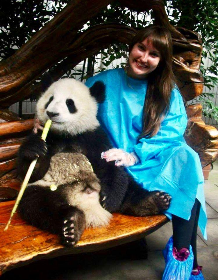 panda-bear-with-poppy-jael