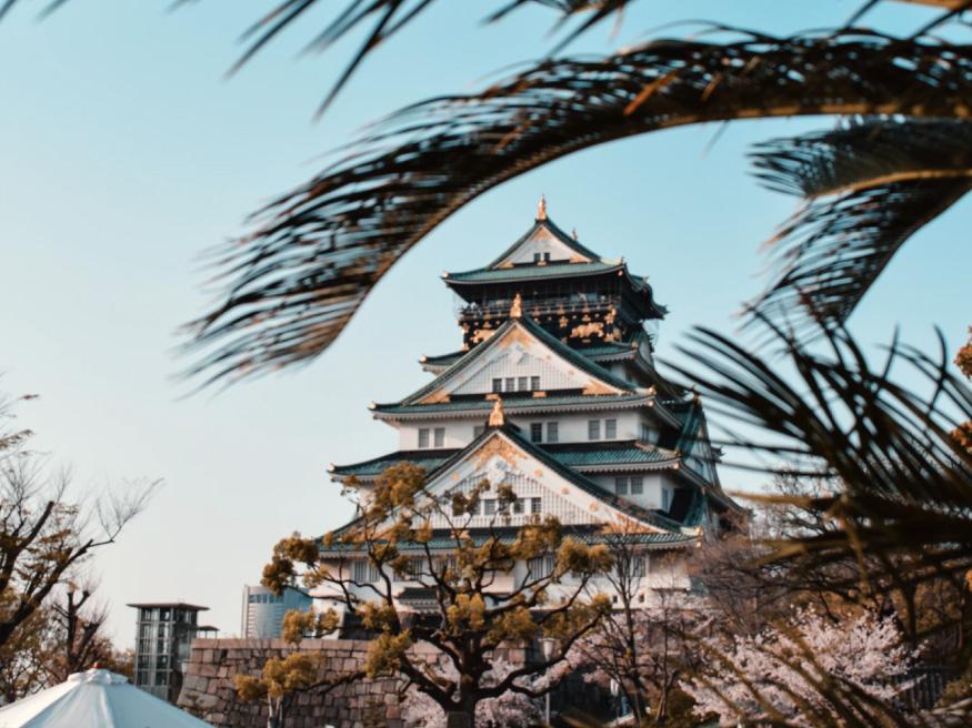 Osaka-internships-